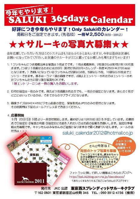 Saluki_calendar_2012